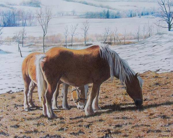 Horses Poster featuring the mixed media Two Ponies In The Snow by Constance Drescher