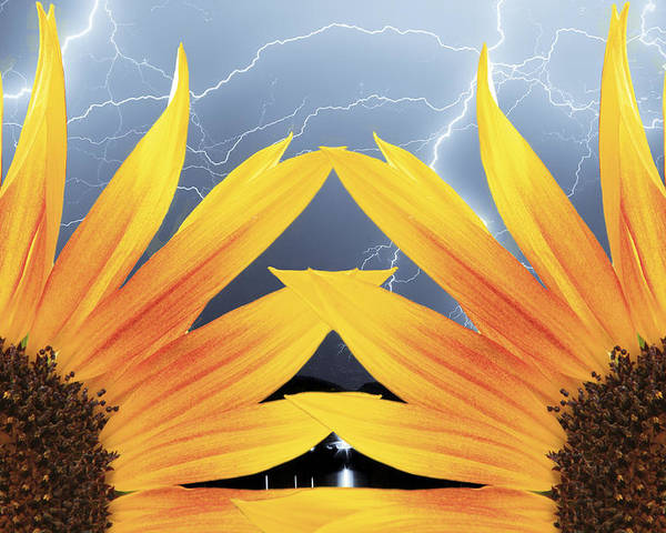 Sunflowers Poster featuring the photograph Two Sunflower Lightning Storm by James BO Insogna