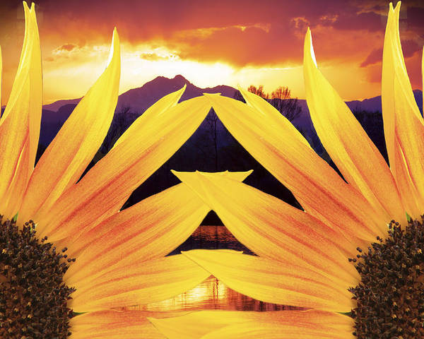 Sunflowers Poster featuring the photograph Two Sunflower Sunset by James BO Insogna
