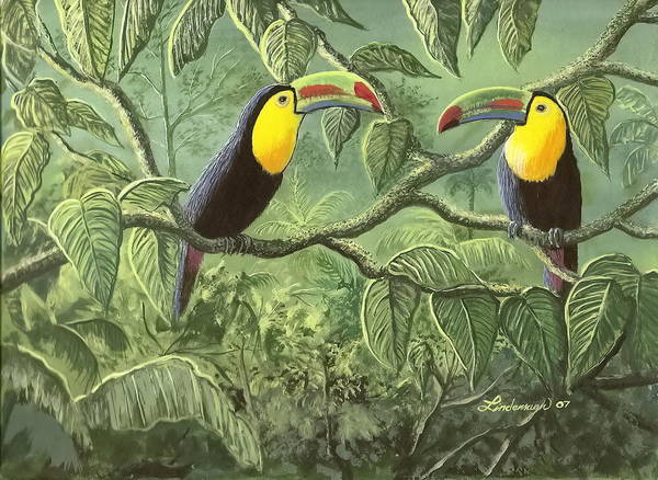 Toucans Poster featuring the painting Two Toucans by Don Lindemann