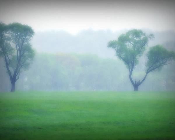 Trees Poster featuring the photograph Two Trees In The Mist by Bill Cannon