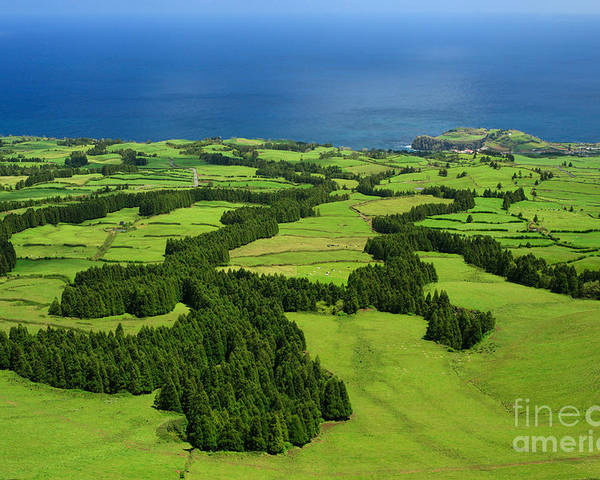 Landscape Poster featuring the photograph Typical Azores Islands Landscape by Gaspar Avila