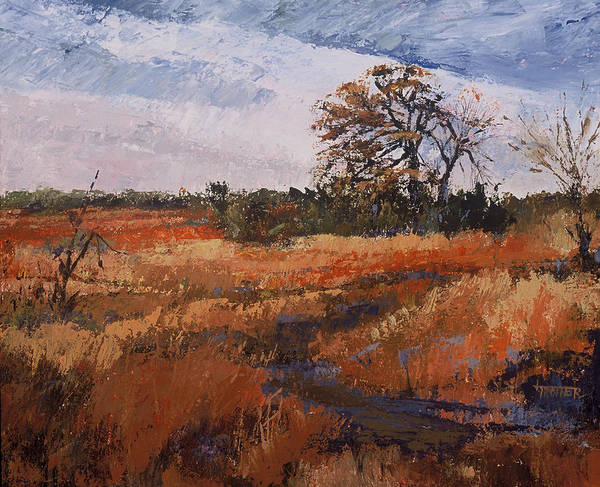 Landscape Poster featuring the painting Typical Texas Field by Jimmie Trotter