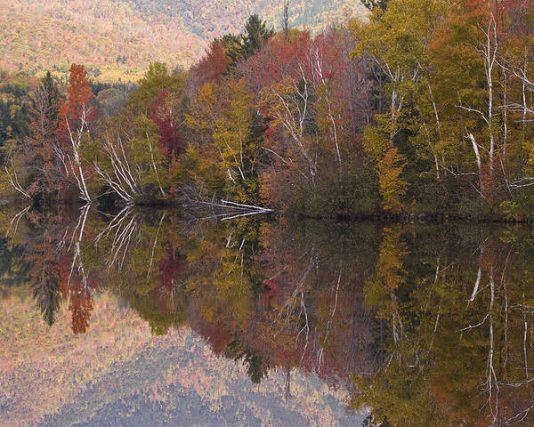 Maine Poster featuring the photograph Umbagog Lake by Henry Krauzyk