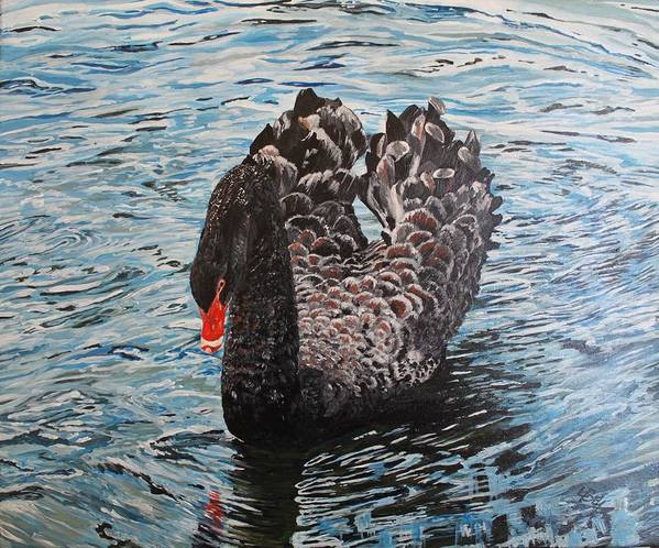Swan Poster featuring the painting Under Full Sail Black Swan by Leonie Bell
