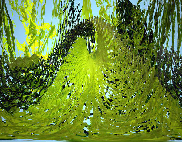 Seaweed Poster featuring the photograph Under Water by Merja Waters