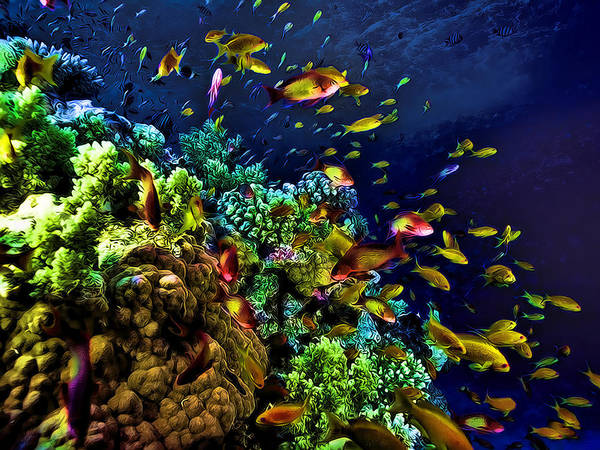 Fish Poster Featuring The Painting Underwater Tropical Glow In Dark Fantasy By Elaine Plesser