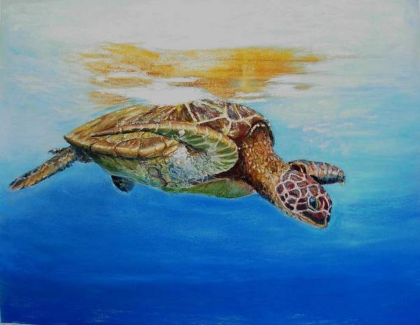 Wildlife Poster featuring the painting Up For Some Rays by Ceci Watson