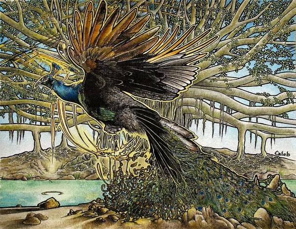 Peacock Poster featuring the painting Uprooting A Banyan Tree by Caleb Hamm