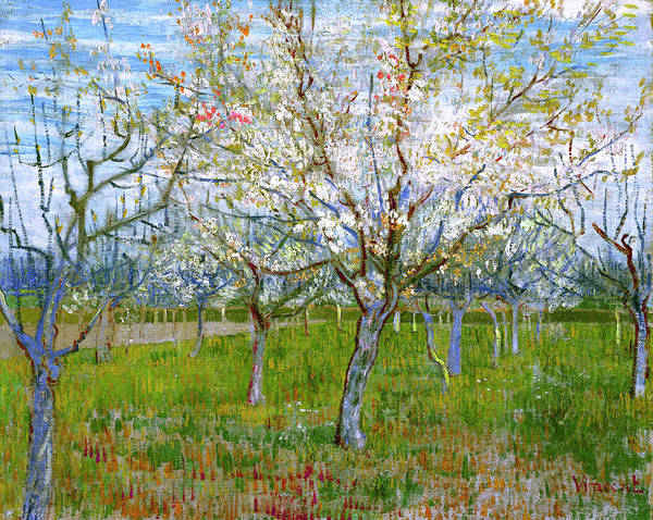 Van Gogh Poster featuring the painting Van Gogh The Pink Orchard by Vincent Van Gogh