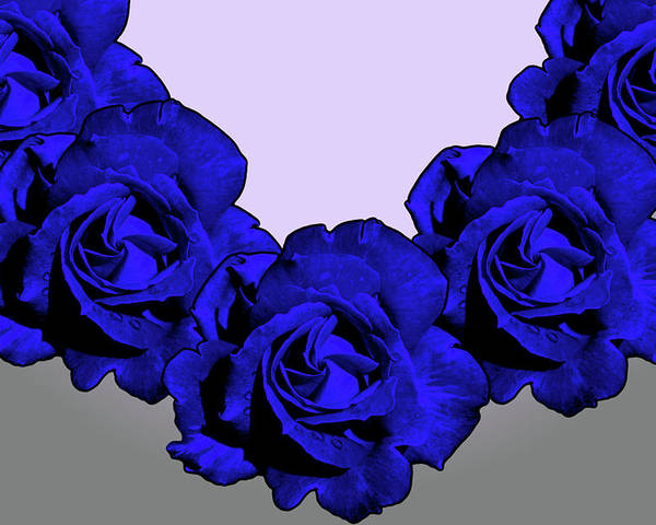 Blue Poster featuring the photograph Varas Rose 30 by Per Lidvall