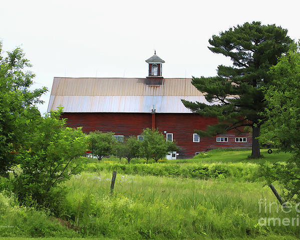 Barn Poster featuring the photograph Vermont Barn With Tire Swing by Deborah Benoit
