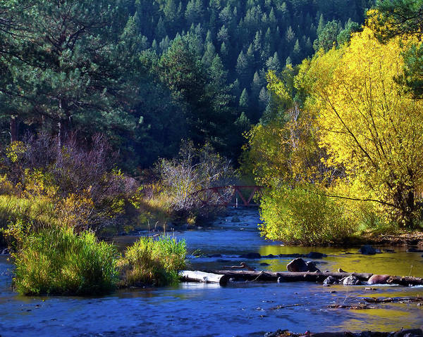 Autumn Poster featuring the photograph Vibrant Bear Creek by Crystal Garner