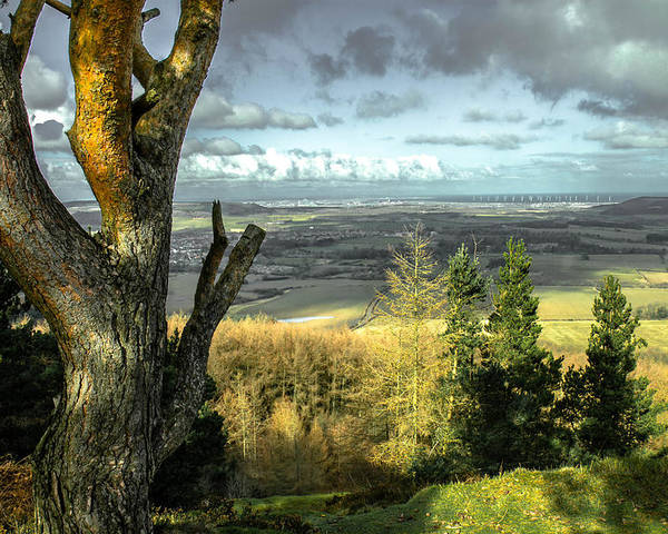 Redcar From Guisborough Forest Poster featuring the photograph View Over Redcar by Andrew Oxby