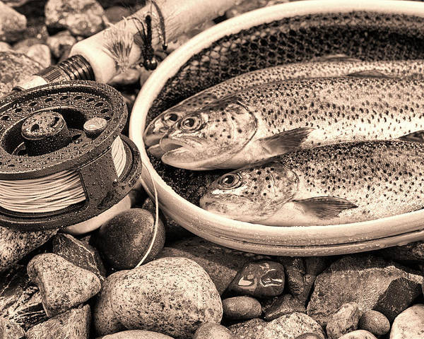 Vintage Poster featuring the photograph Vintage Concept Of Fly Reel And Pole With Trout In Net by Thomas Baker