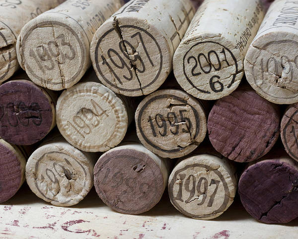 Frank Tschakert Poster featuring the photograph Vintage Wine Corks by Frank Tschakert