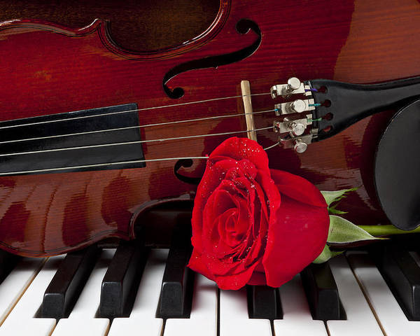Violin Poster featuring the photograph Violin And Rose On Piano by Garry Gay