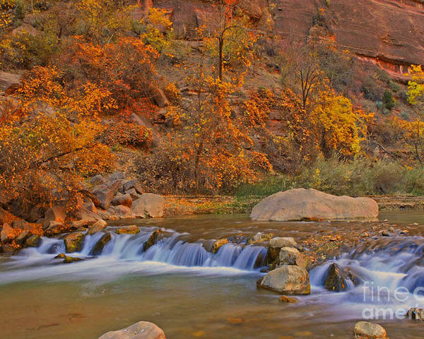 Utah Poster featuring the photograph Virgin River In Autumn by Dennis Hammer
