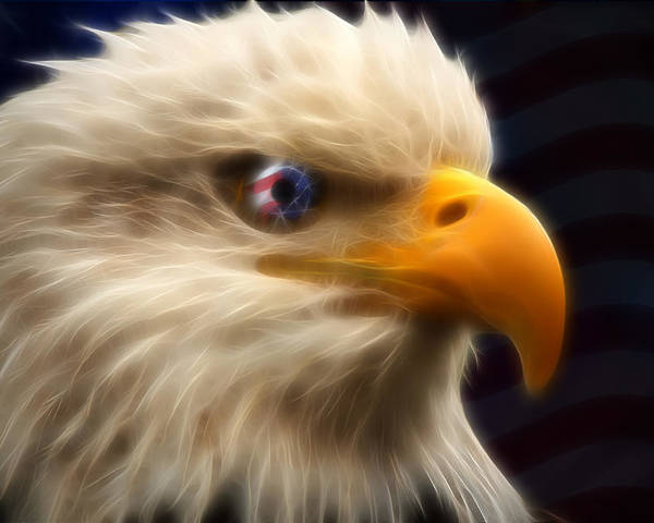 Bald Poster featuring the digital art Vision Of Freedom II by Ricky Barnard