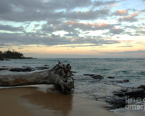 Wailua Bay Kauai Hawaii Sunset Landscape Photography Palm Trees Beach Tree Log Ocean Poster featuring the photograph Wailua Bay by Kelly Wade