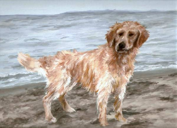 Dog Poster featuring the painting Waiting For Fetch by Meagan Visser