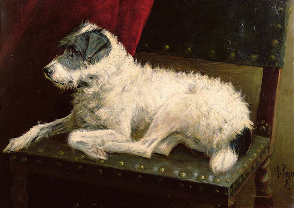 Dog Poster featuring the painting Waiting For Master by George Paice