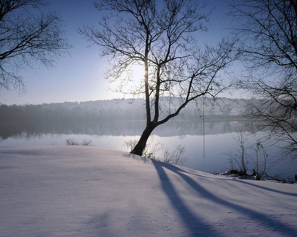 Winter Poster featuring the photograph Waiting For Summer by Ross Powell