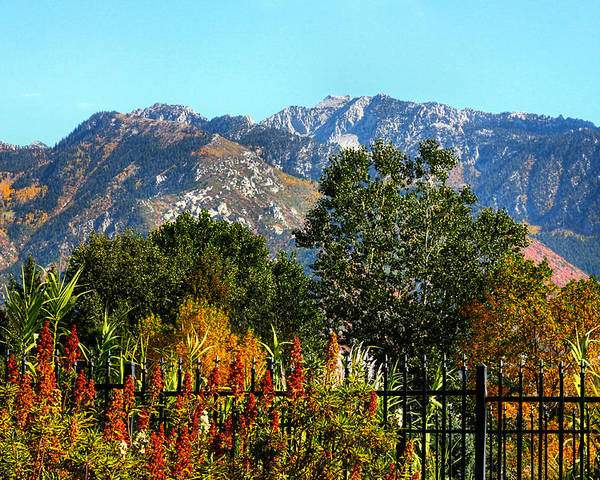 Wasatch Mountains Poster featuring the photograph Wasatch Mountains In Autumn by Tracie Kaska