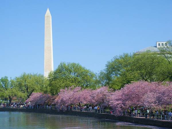 Washington Dc Poster featuring the photograph Washington Monument 2 by Jeanette Oberholtzer