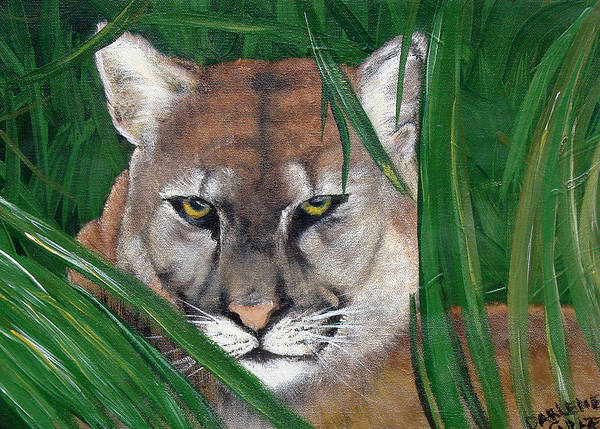 Panther Poster featuring the painting Watching Florida Panther by Darlene Green