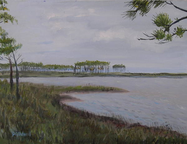 Landscape Beach Coast Tree Water Poster featuring the painting Water Color by Patricia Caldwell