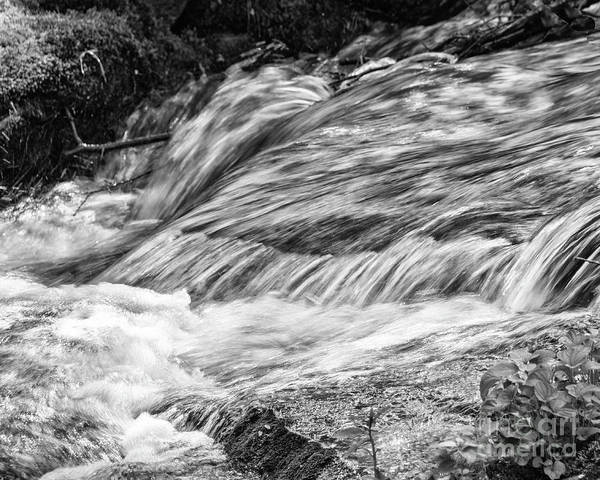 Stream Poster featuring the photograph Water Flow by John Greco