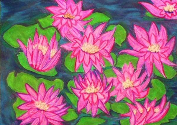 Landscape Poster featuring the drawing Water Lillies by Katina Cote
