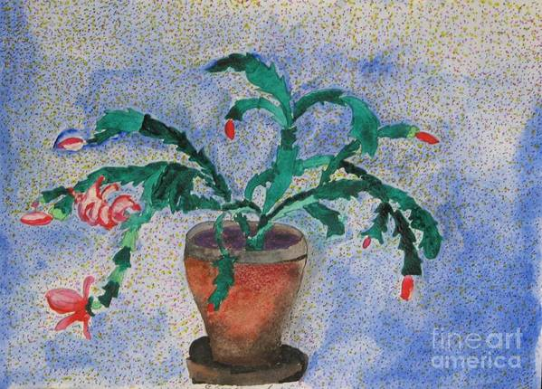 Christmas Poster featuring the mixed media Watercolor Christmas Cactus First Bloom by James SheppardIII