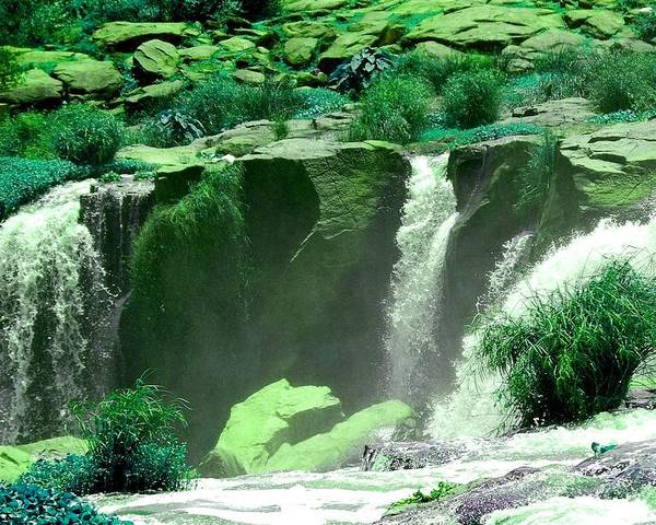 Water Poster featuring the photograph Waterfall by Apurva Madia