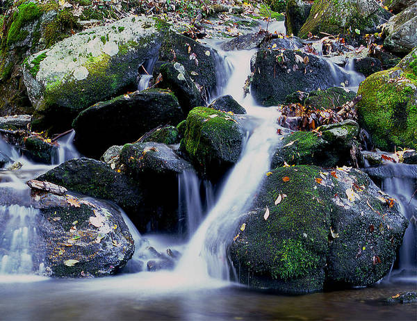 Waterfall Poster featuring the photograph Waterfall by Gene Sizemore