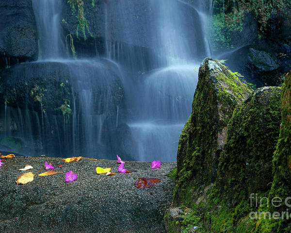 Autumn Poster featuring the photograph Waterfall02 by Carlos Caetano