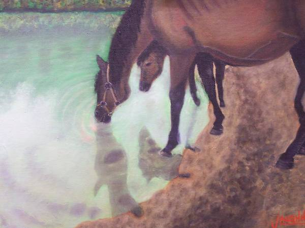 Horses Water Land Scape Reflection Poster featuring the painting Watering Hole by Charles Vaughn