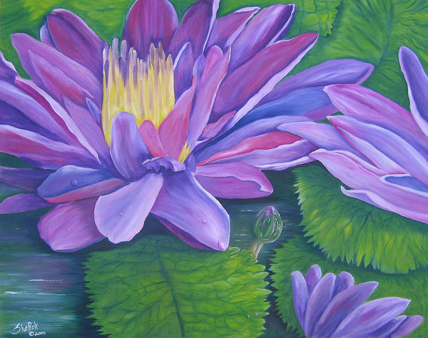 Floral Poster featuring the painting Waterlilies by SheRok Williams
