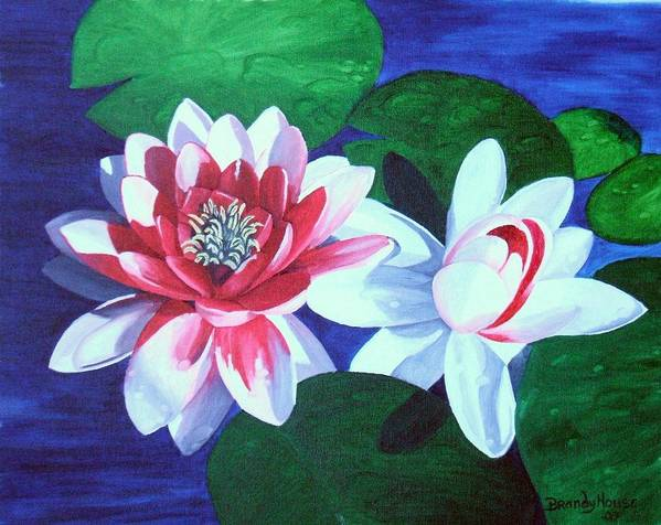 Water Lilies Poster featuring the painting Waterlily Dance by Brandy House