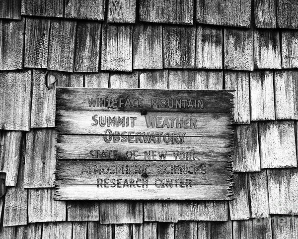Weather Poster featuring the photograph Weathered by David Lee Thompson