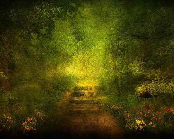 Branches Poster featuring the digital art Welcome Path by Svetlana Sewell