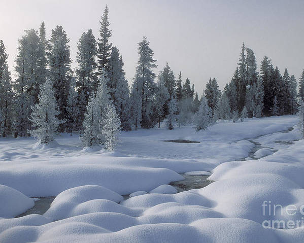 Yellowstone Poster featuring the photograph West Thumb Snow Pillows by Sandra Bronstein