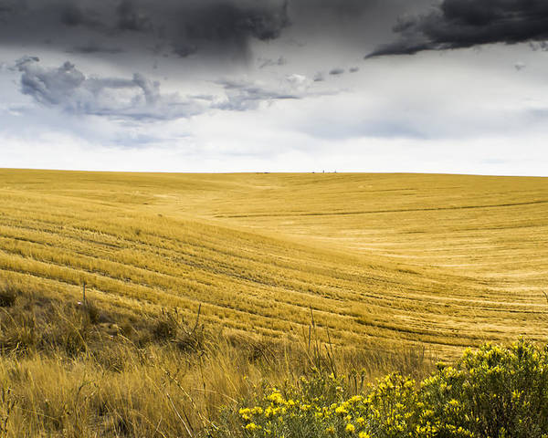Autumn Poster featuring the photograph Wheat Fields With Storm by John Trax