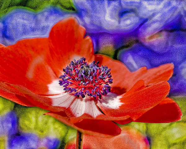 Poppy Poster featuring the digital art Whimsical by Ches Black