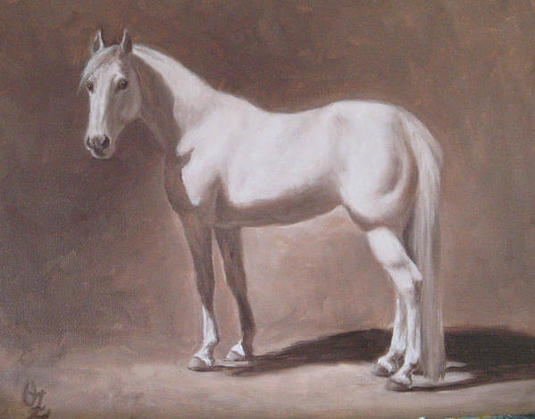 Horse Poster featuring the painting White Horse Study by Oksana Zotkina