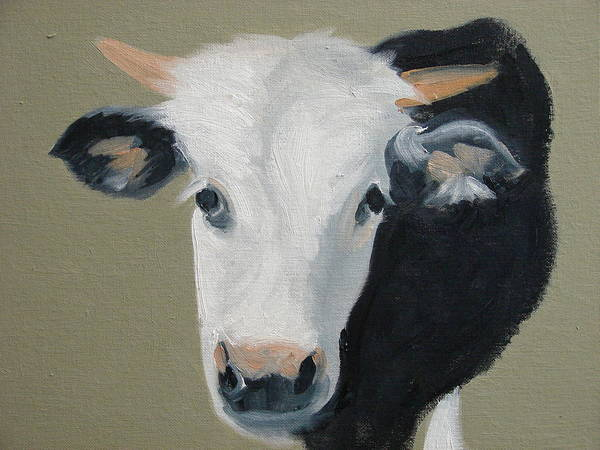 Cattle Poster featuring the painting Who You Lookin At by Robert Rohrich