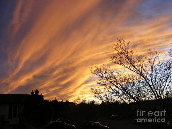 Red Clouds Poster featuring the photograph Wild Sky Of Autumn by Barbara Griffin