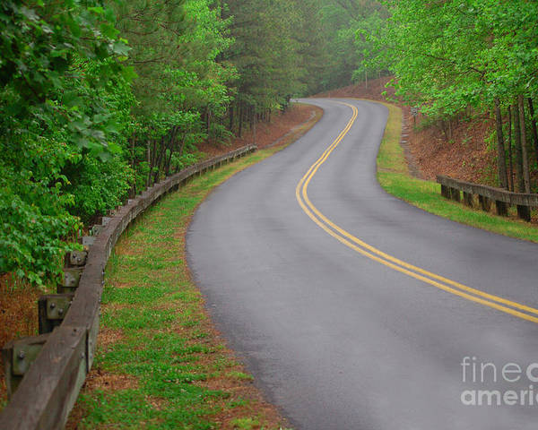 Nature Poster featuring the photograph Winding Road by David Smith