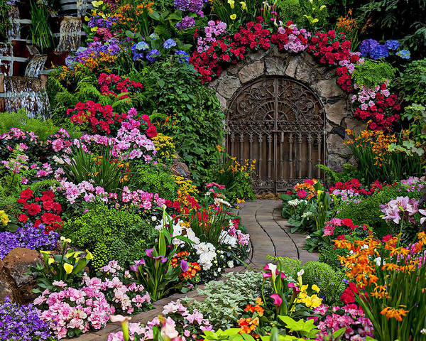 Flowers Poster featuring the photograph Wine Celler Gates by Garry Gay
